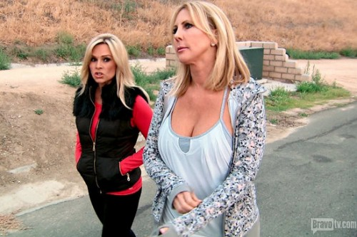 Vicki Gunvalson And Tamra Barney At War Again Over Brooks Ayers For A RHOC Storyline?