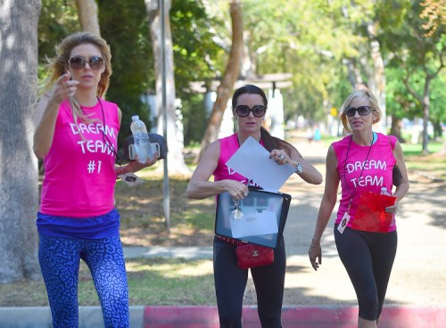 Photos: Real Housewives Of Beverly Hills 'Dream Team'! Plus, Brandi Glanville Fighting With Kyle Richards And Lisa Rin